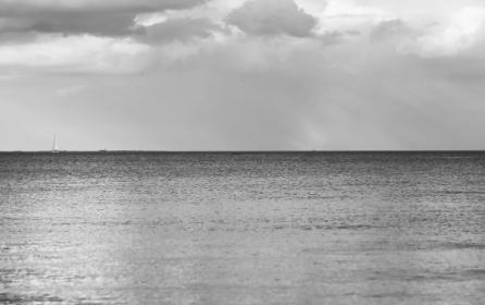 The Cochrane Collaboration: Jak se vyznat v moři nejnovějších vědeckých poznatků?